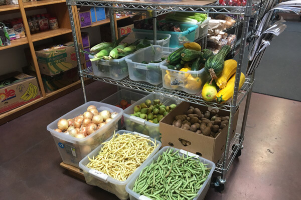 Image result for food gleaners